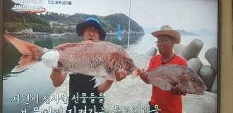 채널A 신대동여지도 천하장사 이만기 이반장 150회~151회 용궁어가밥상